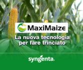 MaxiMaize Syngenta cover