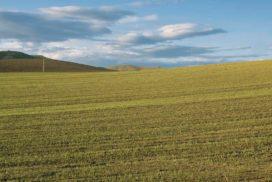 colline Basilicata