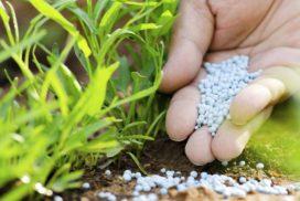 Fertilizzante azotato granulare