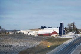 azienda agricola americana