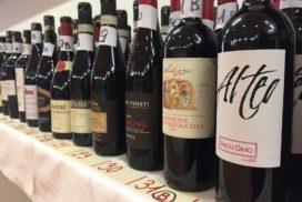 Alcune delle bottiglie presentate ad Anteprima Amarone 2015