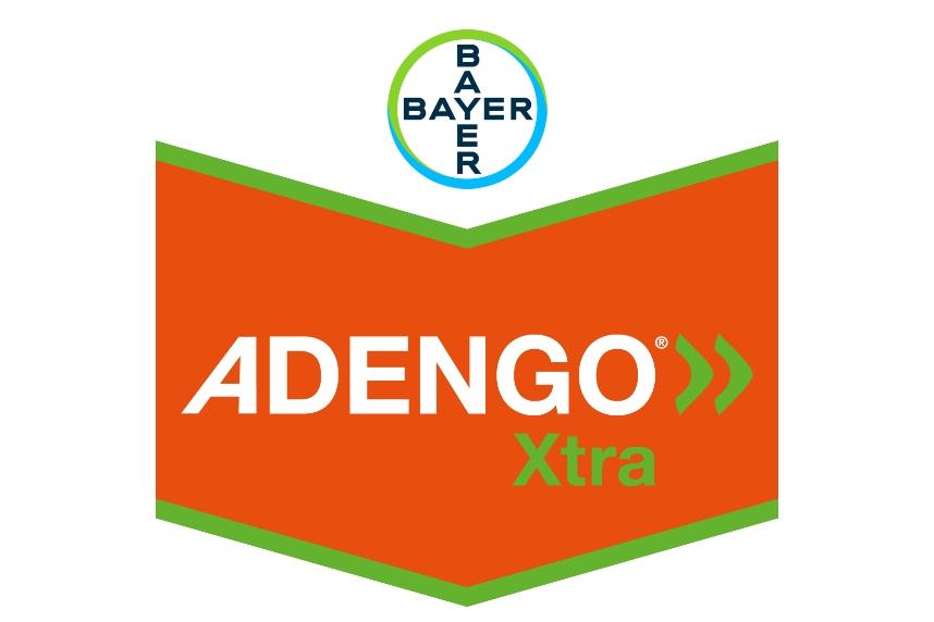 logo Adengo Xtra Bayer