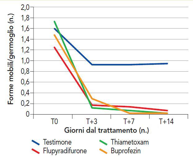 Scaphoideus titanus prove 2017 con flupyradifurone