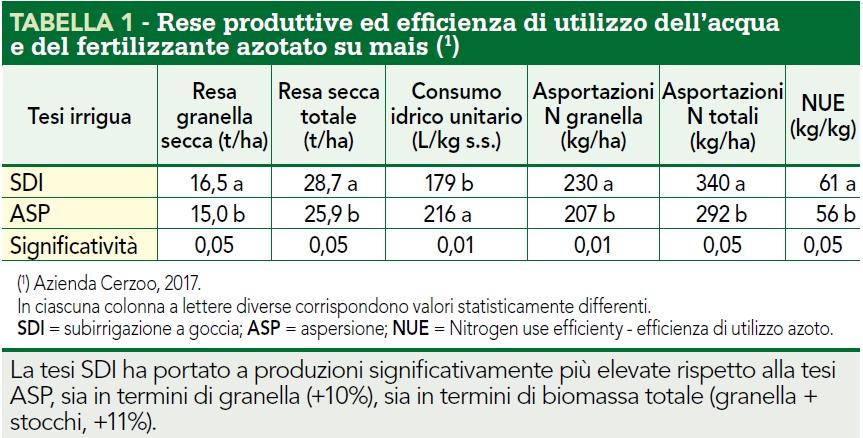 Rese produttive ed efficienza acqua SDI mais