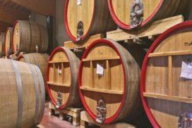 Botti legno vino