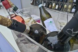 vini italiani all'estero
