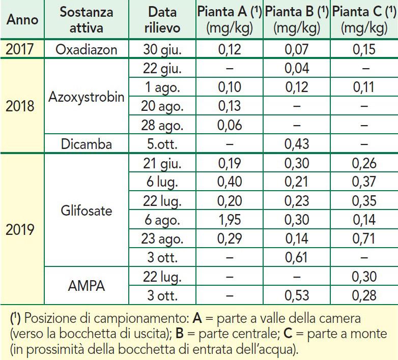 Residui agrofarmaci in piante riso bio azienda Centro ricerche Enr