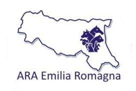 ARAER logo