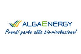 Algaenergy loro