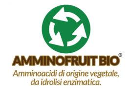 amminofruit bio logo
