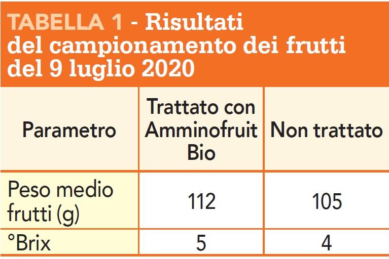 amminofruit bio tabella risultati