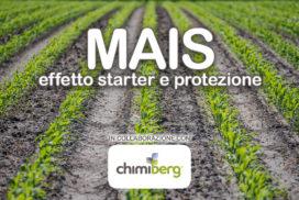 Mais effetto starter e protezione Chimiberg cover