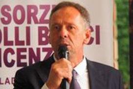 Silvio Dani
