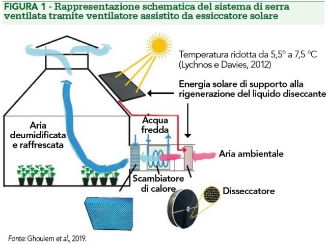 serra ventilata essiccatore solare